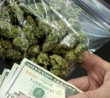 Води се разследване за контрабанда на марихуана през ГКПП Гюешево